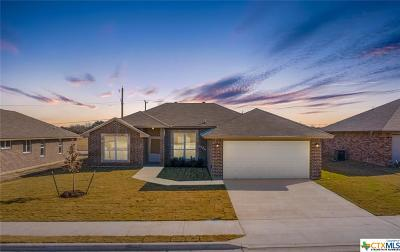 Killeen Single Family Home For Sale: 6906 Catherine Drive