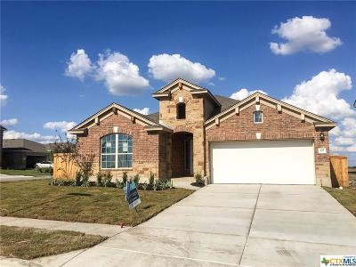 San Marcos Single Family Home For Sale: 105 Cypress Hills Drive