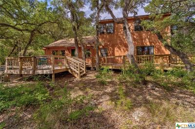 Wimberley Single Family Home For Sale: 1550 S Rainbow Ranch Road