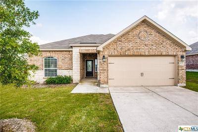 New Braunfels Single Family Home For Sale: 6277 Begonia