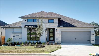 New Braunfels Single Family Home For Sale: 583 Orchard Way