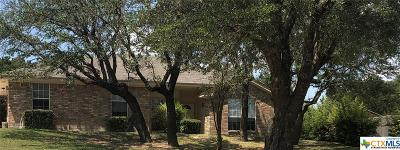 Kempner Single Family Home For Sale: 4006 Wells Drive