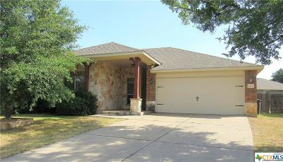 Killeen Single Family Home For Sale: 6702 Indian Hawthorne Drive
