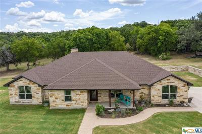 Bosque County, Bell County, Burnet County, Calhoun County, Coryell County, Lampasas County, Limestone County, Llano County, McLennan County, Mills County, Milam County, San Saba County, Williamson County, Hamilton County, Travis County, Comal County, Comanche County, Kendall County Single Family Home For Sale: 500 Cooks Lane