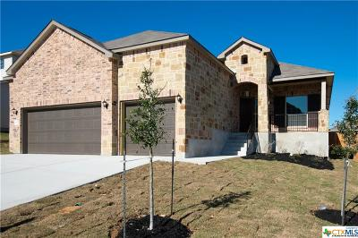 New Braunfels Single Family Home For Sale: 3617 Black Cloud Dr