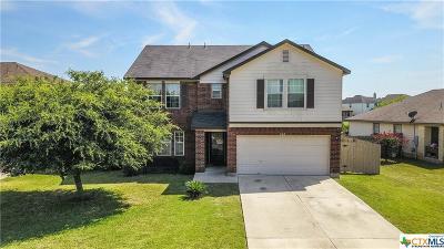 Kyle Single Family Home For Sale: 280 Mistletoe Lane