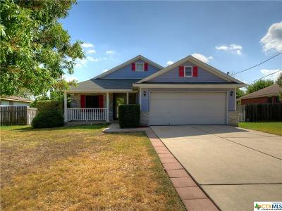 Hays County Single Family Home For Sale: 136 James Lin Circle