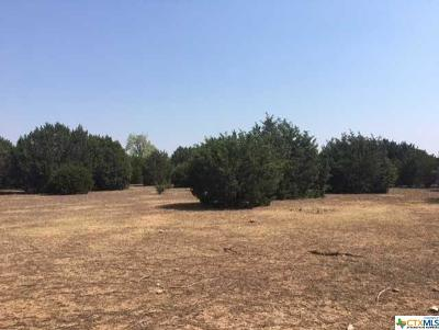 Killeen Residential Lots & Land For Sale: 10 Acres Stillman Valley Road