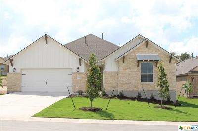 San Marcos TX Single Family Home For Sale: $488,481