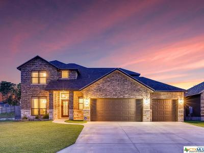 New Braunfels Single Family Home For Sale: 2290 Sun Stone Place
