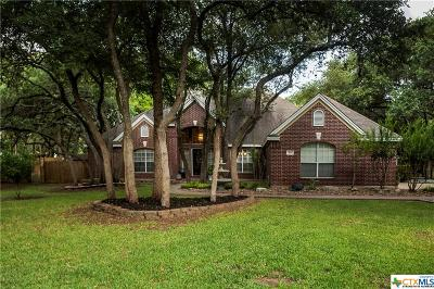 Hays County Single Family Home For Sale: 611 Willow Creek Circle