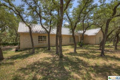 Wimberley Single Family Home For Sale: 602 Ledgerock Road