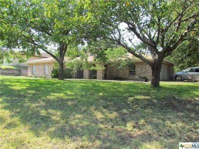 Gatesville Single Family Home For Sale: 2527 Lowrey Dr