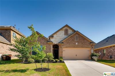 Helotes Single Family Home For Sale: 10323 Rocamora