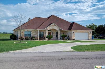 Seguin Single Family Home For Sale: 224 Kimbrough