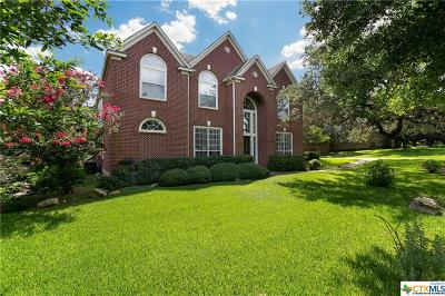 Boerne Single Family Home For Sale: 8502 Monument Oak