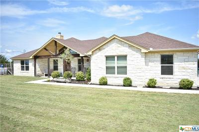Kempner  Single Family Home For Sale: 201 County Road 3375