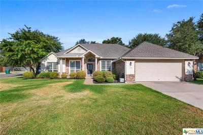 Belton Single Family Home For Sale: 2910 Amber Forest Trail