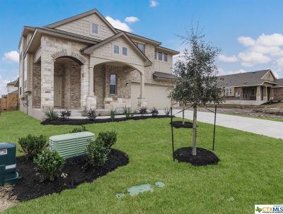 Hutto Single Family Home For Sale: 536 Tanda Lane
