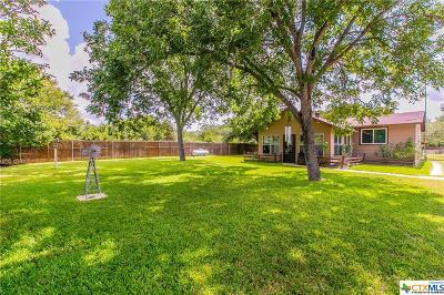 Belton Single Family Home For Sale: 6301 Elm Grove Road