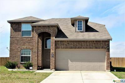 Seguin Single Family Home For Sale: 1401 Doncaster Drive
