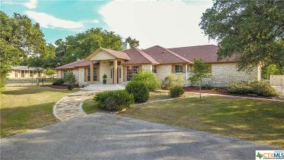 San Marcos Single Family Home For Sale: 121 Cascade Trail