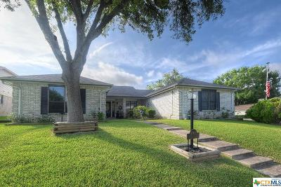 Schertz Single Family Home For Sale: 3700 Scenic Drive