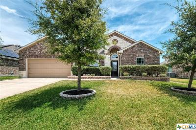 Pflugerville Single Family Home For Sale: 20517 Auk Road