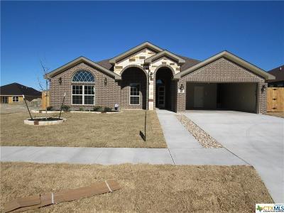 Killeen Single Family Home For Sale: 6105 Cordillera Drive