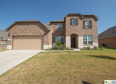 Killeen Single Family Home For Sale: 6503 Serpentine Drive