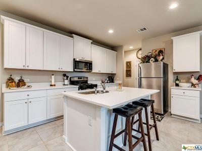 San Marcos Single Family Home For Sale: 233 Braeden Brooke Drive