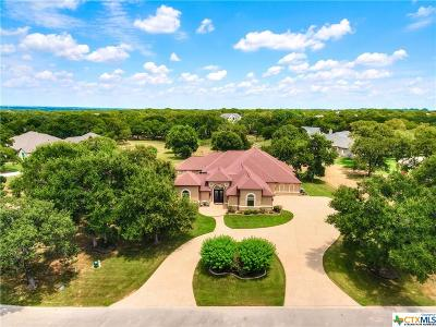 Temple, Belton, Salado, Troy Single Family Home For Sale: 1939 Running Creek Drive