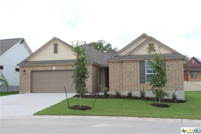 San Marcos TX Single Family Home For Sale: $467,189
