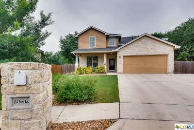 San Marcos Single Family Home For Sale: 133 Park Lane