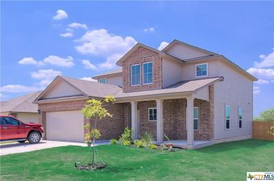 Seguin Single Family Home For Sale: 1001 Clarkston Drive