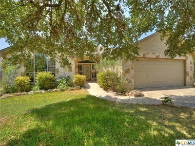 San Marcos Single Family Home For Sale: 2037 Ridge View Drive
