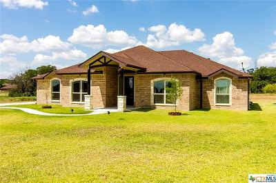Kempner Single Family Home For Sale: 227 County Road 4774