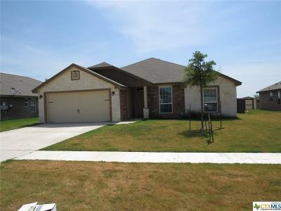 Killeen Single Family Home For Sale: 6304 Castle Gap Drive