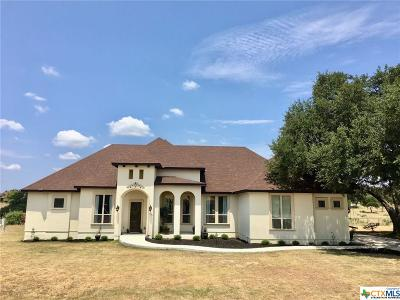 Comal County Single Family Home For Sale: 1143 Sapling Spring