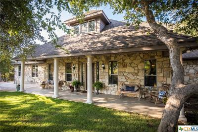 Comal County Single Family Home For Sale: 119 Sun River