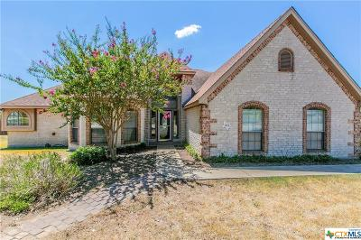 Salado Single Family Home For Sale: 1101 Yellow Rose