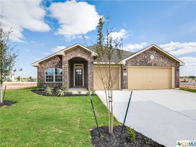 Comal County Single Family Home For Sale: 370 Nightshade Trail