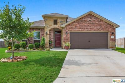 Temple Single Family Home For Sale: 310 Stonehouse Lane