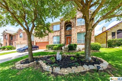 Round Rock Single Family Home For Sale: 3819 Links Lane