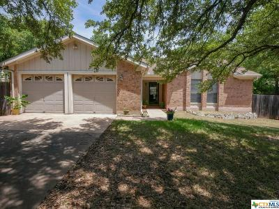Austin Single Family Home For Sale: 4106 Oak Creek Drive