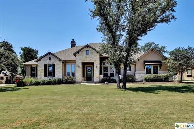 Liberty Hill Single Family Home For Sale: 121 Umbrella Sky