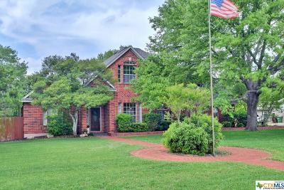 Round Rock Single Family Home For Sale: 3607 Arrowhead Circle