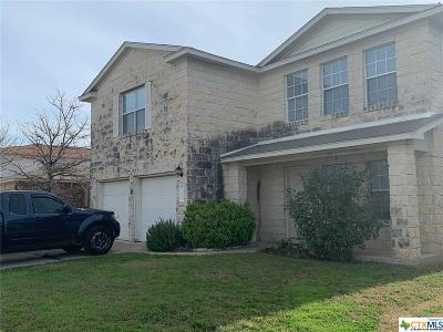 Pflugerville Single Family Home For Sale: 17503 Wiseman Drive