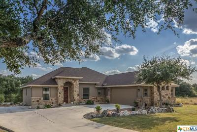 Comal County Single Family Home For Sale: 1017 Blend Way