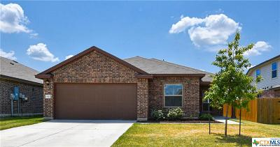 Killeen Single Family Home For Sale: 5302 Two Brothers Lane